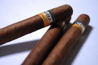 Bei Zigarren handelt es sich um aus Tabak gerollte Genussmittel