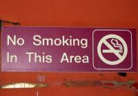 Rauchverbote sollen demnächst nicht nur in öffentlichen Räumen, sondern auch in Gaststätten gelten.