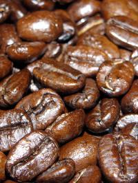 Kaffeebohnen. Für viele Menschen wird der Kaffee zur Sucht