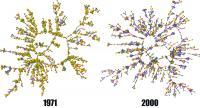 Netzwerk von 1000 zufällig ausgewählten Teilnehmern der Studie: In den 1970er Jahren sind überall noch viele Raucher (gelbe Punkte) zu finden. 30 Jahre danach hat ihre Zahl abgenommen und sie wurden vermehrt an den Rand der sozialen Gruppen gedrängt.
