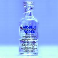 Eine Absolut Vodka Flasche, Import aus Schweden